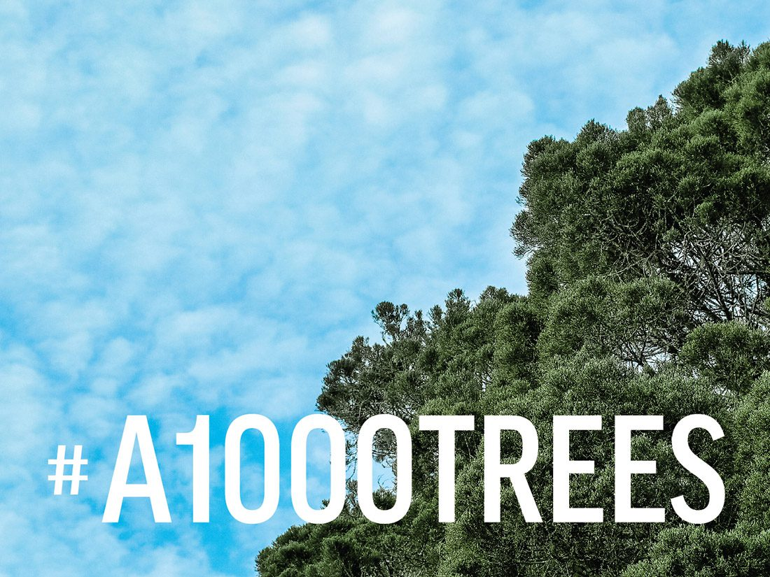 A1000TREES-plantation-drive-using-social-media